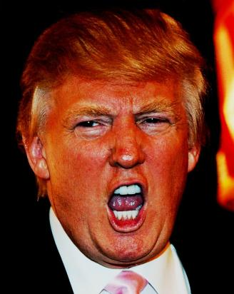 Orange Donald